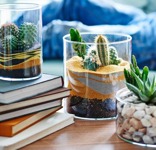 Vista de una mesa jardín, un desierto de gravilla y jardines de arena con cactus y plantas suculentas.