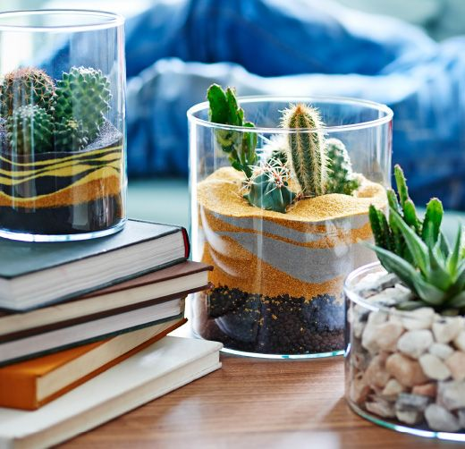 "How to make a table terrarium: You might think you have no space for an indoor garden – but all you need is part of a table. Cacti and succulents are easy to look after, so they're ideal if you don't have much time or are often away. A collection of ""cactus-scapes"" creates drama, so have fun playing with different styles. Click to find out how to make your own."