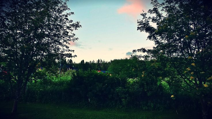 🌷 #nature #sky #clouds #trees #grass #leaf #house #green #photos #pics #photography #adventure #travel #sweden #my #memories #love #message💌