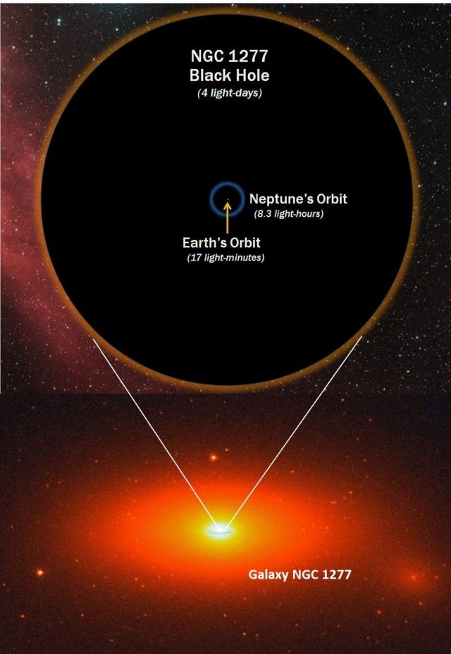 "Biggest Ever Black Hole 17 billion times the mass of the sun-This diagram shows how the diameter of the 17-billion-solar-mass giant black hole, in the heart of galaxy NGC 1277, compares with the orbit of Neptune around the Sun. The black hole is eleven times wider than Neptune's orbit. Shown here in two dimensions, the ""edge"" of the black hole is actually a sphere."