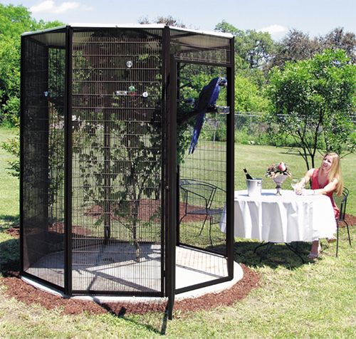 A nice, big aviary for my future parrot(s)! :)