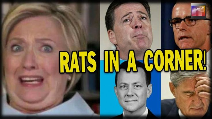 2/1/18 BREAKING: Obama, Hillary, Comey & McCabe BACKED INTO A CORNER After FBI ...
