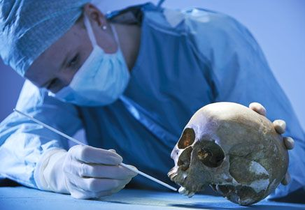 forensic anthropology essay Forensic anthropologist forensic science has always intrigued me, ever since i took a basic in-school career test in the 7th grade i always have.