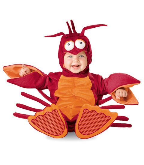 baby lobster costume - Chasing Fireflies