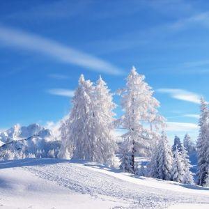 Подборка стихов о зиме