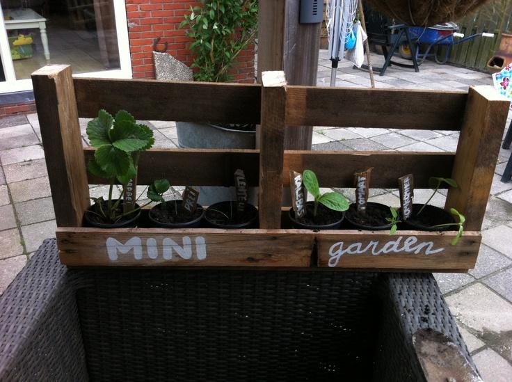 Ons eigen gemaakt mini tuintje!!