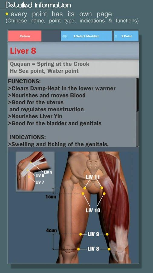 Amta massage study app