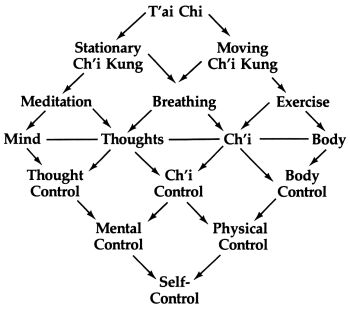 Figure shows the dynamic of yin-yang balance. The right
