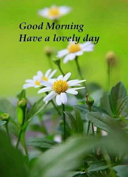 Thank you, good morning too you too :)