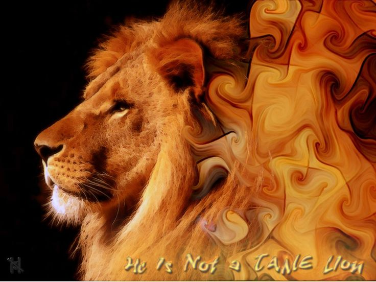 Aslan The Lion From Narnia | in the lion s care while her siblings remain in the dark and in ...
