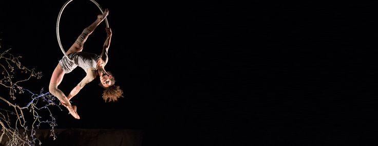 Cirque Plume | Les Nuits de Fourvière