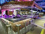 Elia (the bar)