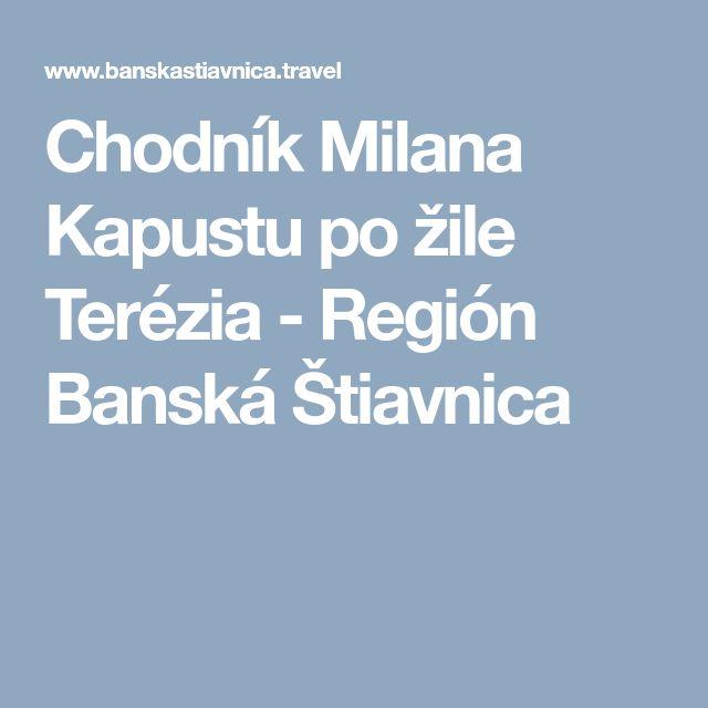 Chodník Milana Kapustu po žile Terézia - Región Banská Štiavnica