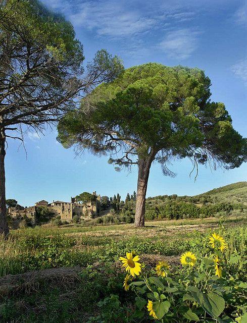 Lago Trasimeno, Perugia, Umbria, Italy