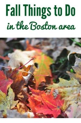 Fall Things to Do in Boston