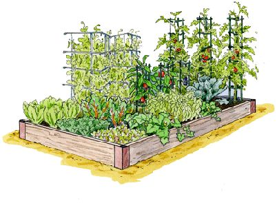 This is the coolest gardening site EVER! On the Gardener's Supply Company website you can design your own garden beds by clicking and dragging the plants you want, where you want them. Then you can print your planting map WITH very detailed planting directions.