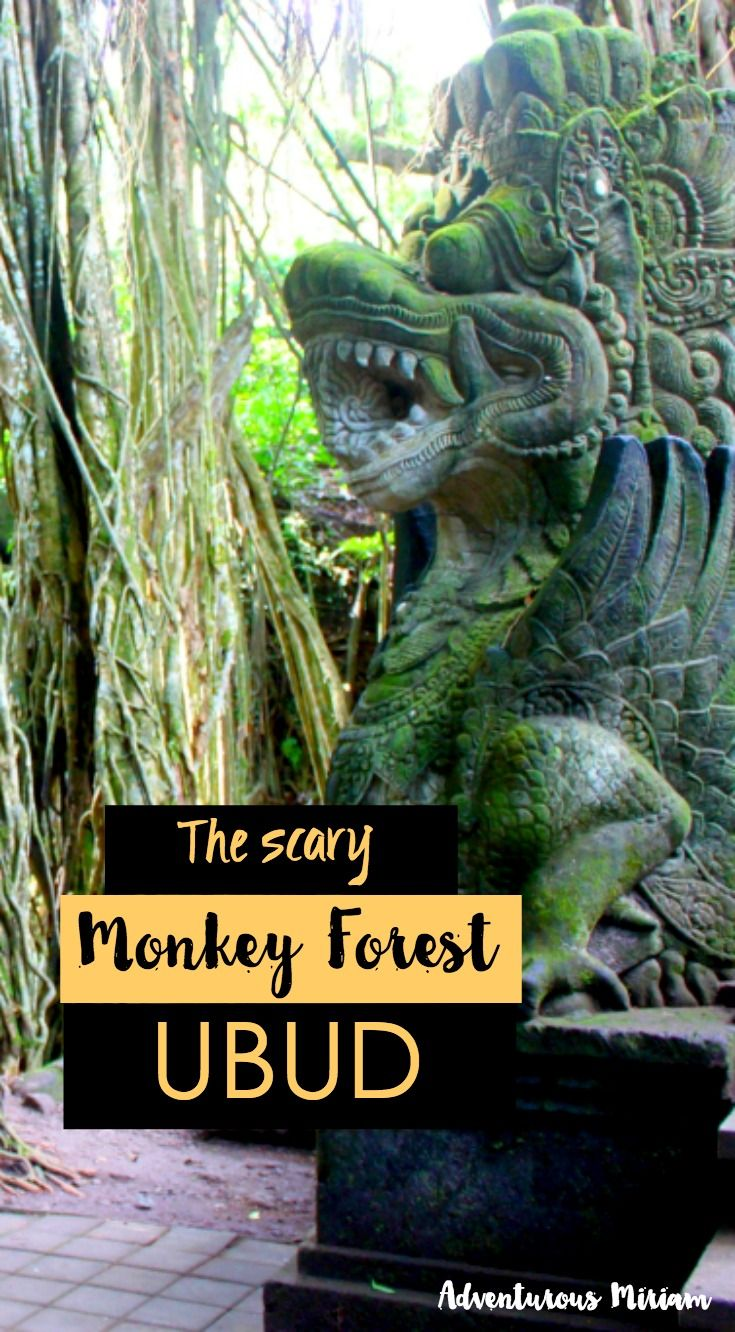 The scary monkey forest in Ubud is notorious for it's spoiled monkeys. But is almost an essential rite of passage for travelers in Bali.