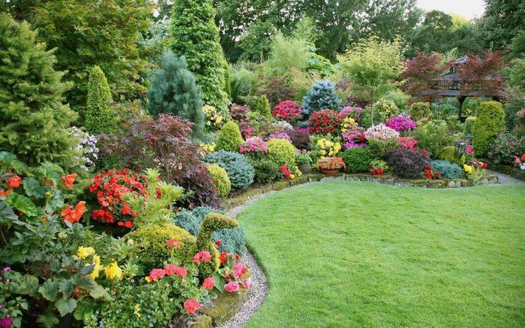 taustakuva puutarha, puita, kukkia, kasveja, ruoho, nurmikko ...