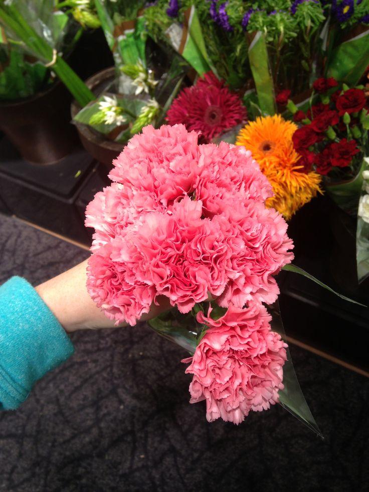 Kroger Carnations Flowers Pinterest