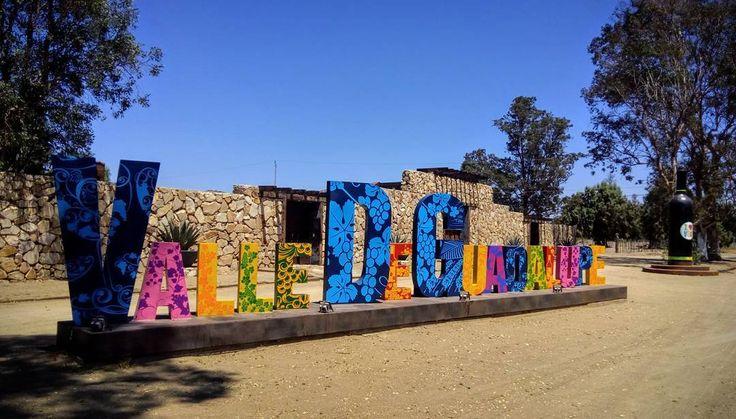 Vámonos a escaparnos al Valle de Guadalupe.  #viñedos #vino #wine #vinomexicano #valledeguadalupe #Ensenada #trip #igersmexico #mexicodesconocido #trip