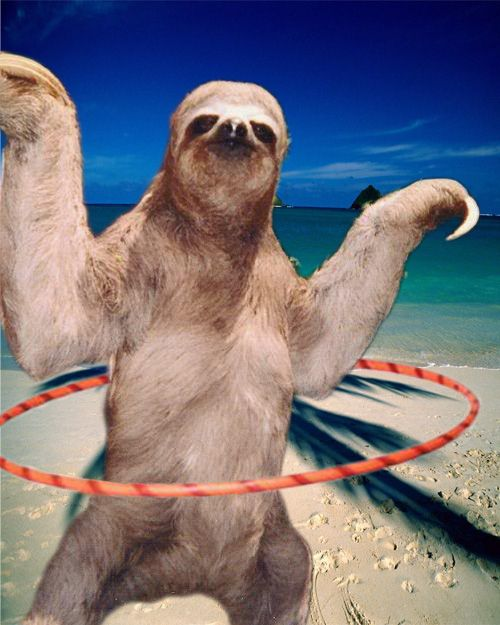 """4. """"Our claws are our only natural defence."""" 