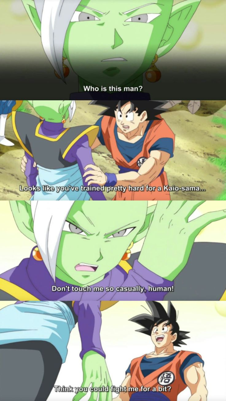 Goku and Zamasu