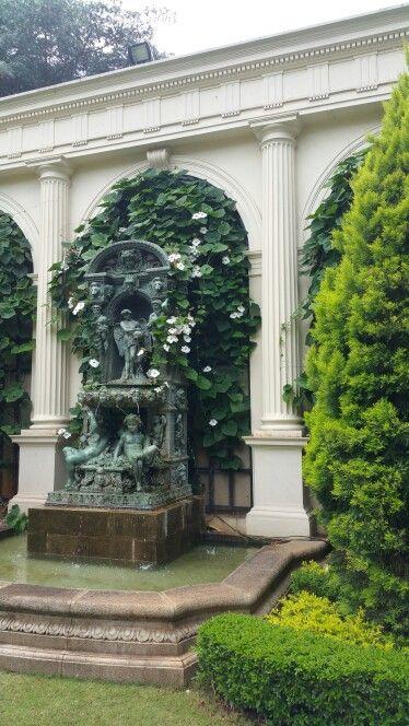 BZP s Garden.