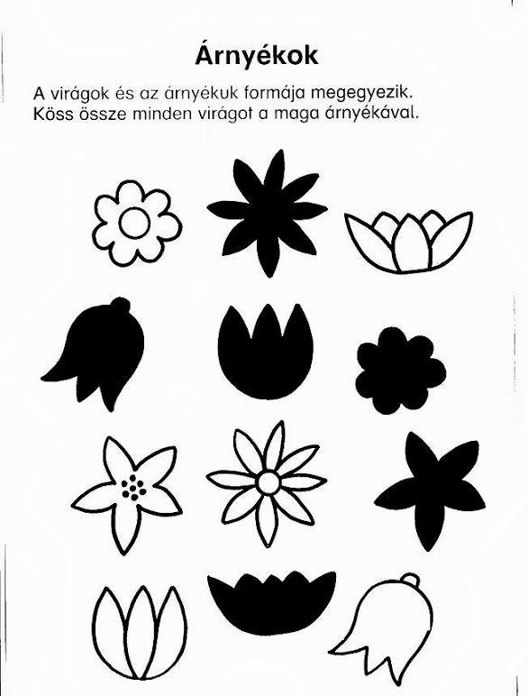 Zoek de juiste schaduw bij de bloemen, free printable
