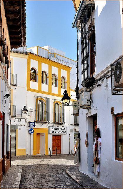 Córdoba : Calle de la Judería / Heladería La Lechera   Spain