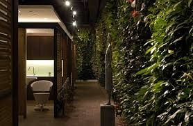 Image result for sanctuary spa beauty