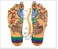 A talpmasszázs gyökerei időszámításunk előtt kb. 2400 évvel ezelőtt alakultak ki Egyiptomban, Kínában és Dél-Amerikában. Több mint 2000 éves falfestményt találtak Egyiptomban olyan jelentettel, amin talp- és kézmasszázst végeznek! A modern talpmasszázs atyja dr. William H. Fitzgerald amerikai fül-orr-gégész volt. A talpmasszázs természetes módja a mezítláb járás! A talpmasszázst szinte mindenki mindenkin végezheti, semmilyen káros hatása nincs, viszont néhány kizáró ok lehetséges…