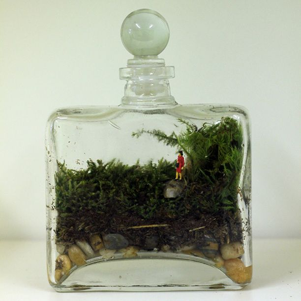 Tropisma Terrarium kit. It includes everything you need to create your very own moss terrarium: a rectangular glass bottle (made from recycled glass), a cork topper, moss, stones and a little woman to keep you company—plus a stick for delicately building it all through the narrow bottleneck.