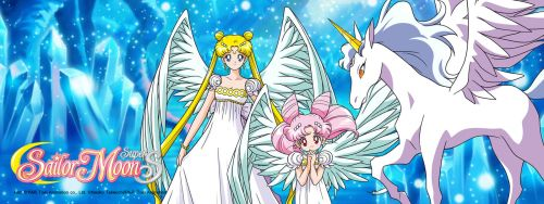 Sailor Super S: Princesses & Pegasus