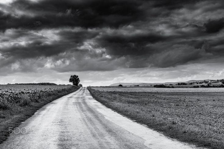 village road - null