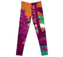 Leggings  http://www.redbubble.com/people/larravide/works/22518534-larravide-forest-feel-warm?asc=u&p=leggings&rel=carousel
