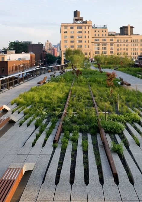 green roof - public space - high line