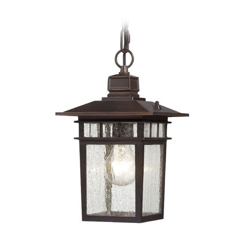 Outdoor Hanging Light with Clear Glass in Rustic Bronze Finish | 60/4955 | Destination Lighting