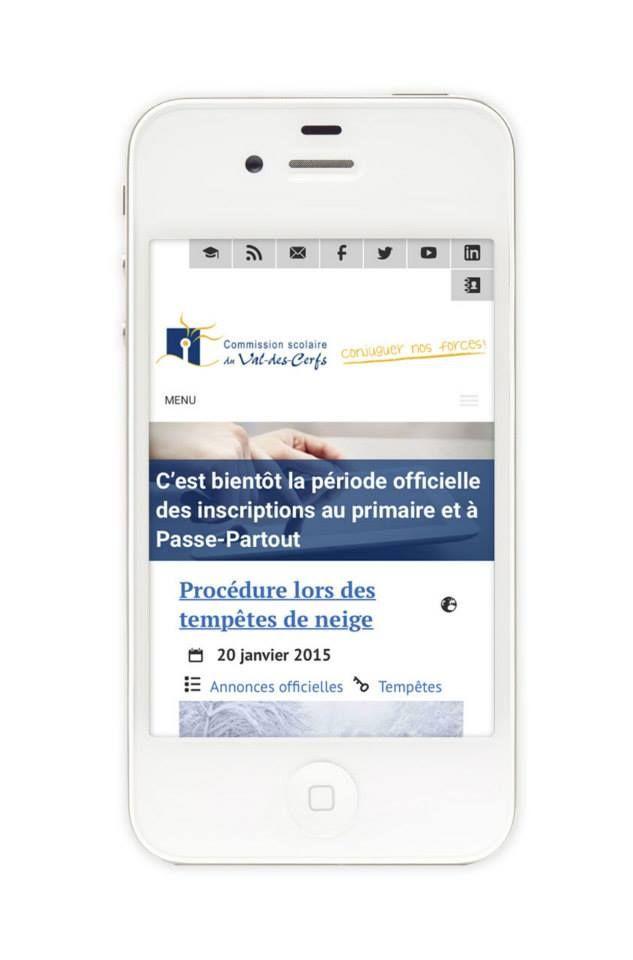 Esprits Libres - Porte-folio 2014 www.espritslibres.ca