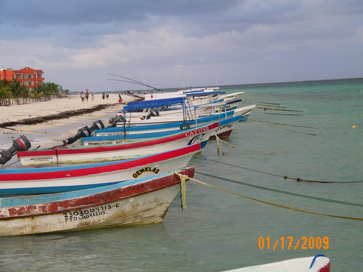 29 best images about riviera maya mexico on pinterest for Puerto morelos fishing