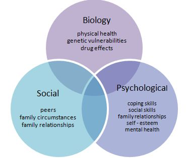 models and perspectives care biopsychosocial The biopsychosocial model, first developed by cardiologist dr george engel, is today widely accepted by the mental health professions  i don't care for anything .
