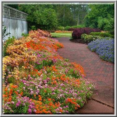 Botanical Gardens Houston Texas And Botanical Gardens Humble Houston Area Texas