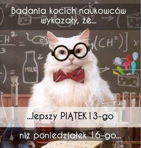 Z tej okazji w kategorii dla kociarzy cały weekend znajdziecie #promo :) #friday #chemistrycat #friday13 #piatektrzynastego #catsofinstagram #jatoko #teamjatoko #kociarze