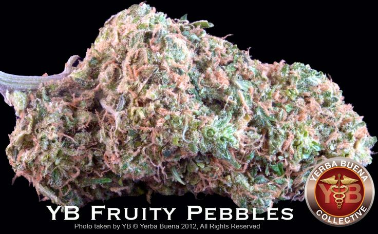 fruity pebble marijuana strain - Google Search | So Beautiful