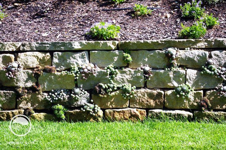 #landscape #architecture #garden #rockery