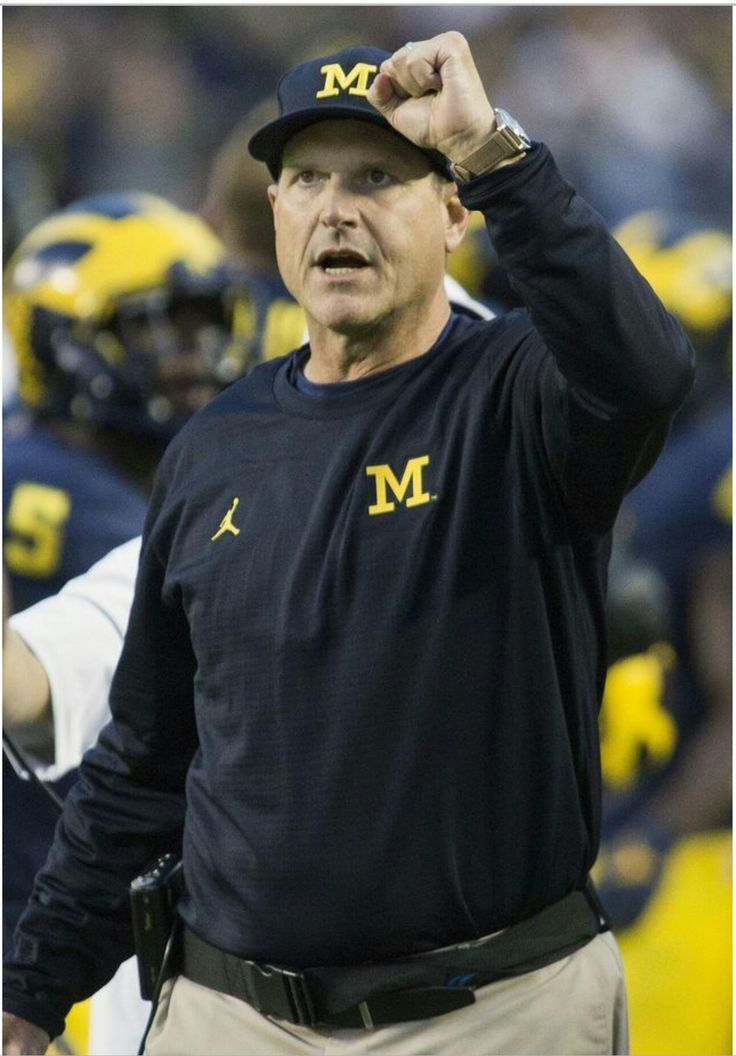 1000 Ideas About Michigan Wolverines Football On
