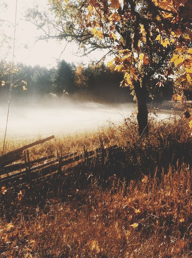 Miracles do not, in fact, break the laws of nature. C. S. Lewis beautiful, mist, autumn, let's fall