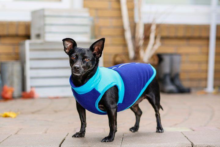 Bailey & Bella Vest with Back Zipper
