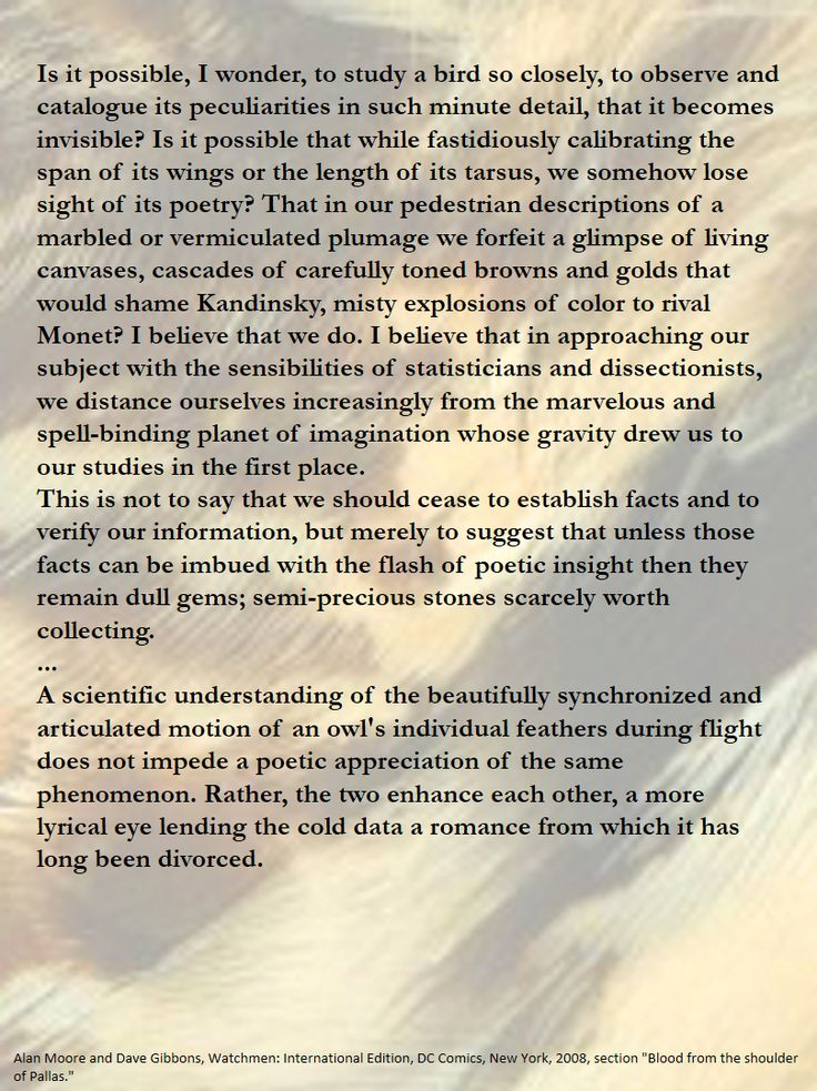 """...A scientific understanding of the beautifully synchronized and articulated motion of an owl's individual feathers during flight does not impede a poetic appreciation of the same phenomenon. Rather, the two enhance each other, a more lyrical eye lending the cold data a romance from which it has long been divorced. Alan Moore and Dave Gibbons, Watchmen: International Edition, DC Comics, New York, 2008, section """"Blood from the shoulder of Pallas."""""""