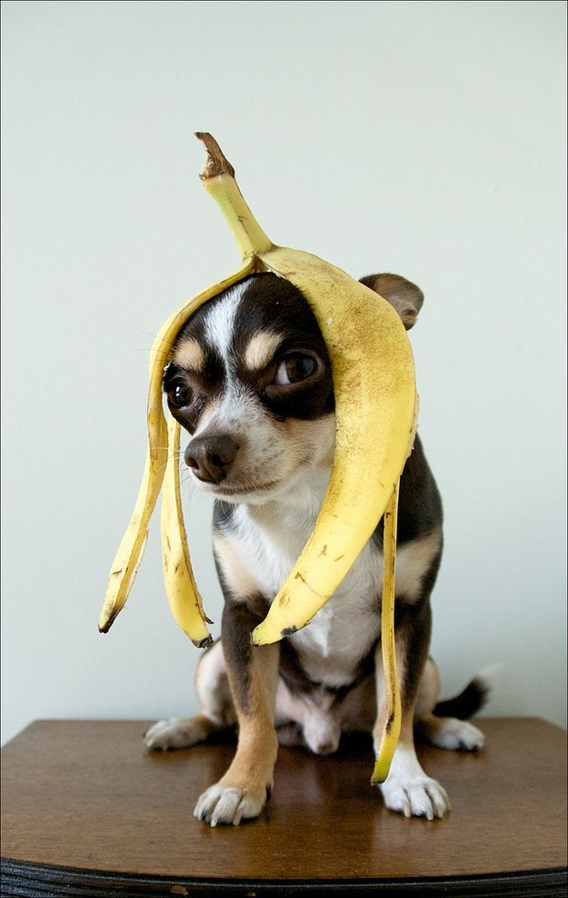 Bananas are a good pick me up half way through the day! #360PR