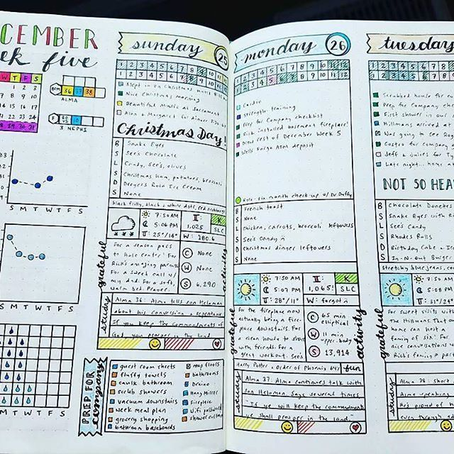 I honestly had the hardest time choosing just one image to feature from @my_blue_sky_design. All of her #bulletjournal pages are gorgeous! Check her out! #Repost @my_blue_sky_design ・・・ Weekly & Daily Spread - December 2016 Week 5  Here's to the first par